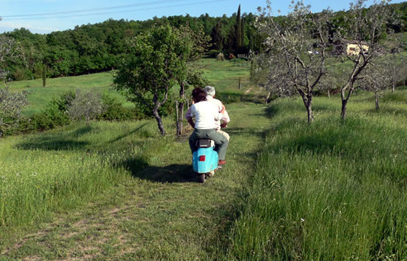 To the olive grove at the mystical Vespa 50